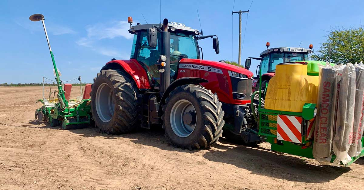 Setting Maize in East Cork 2021